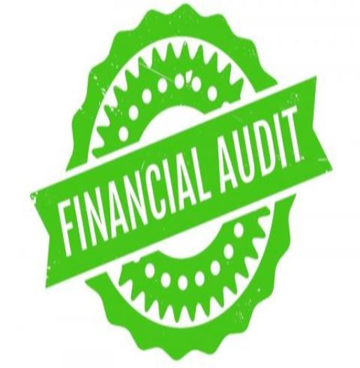 wfinancial_audit